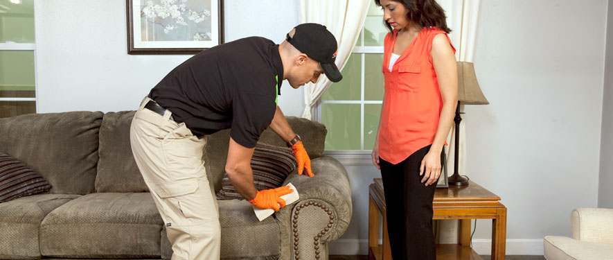 Norco, CA carpet upholstery cleaning