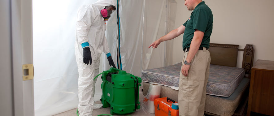 Norco, CA mold removal process